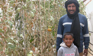 Mohammed & one of his children showing off their tomatoes